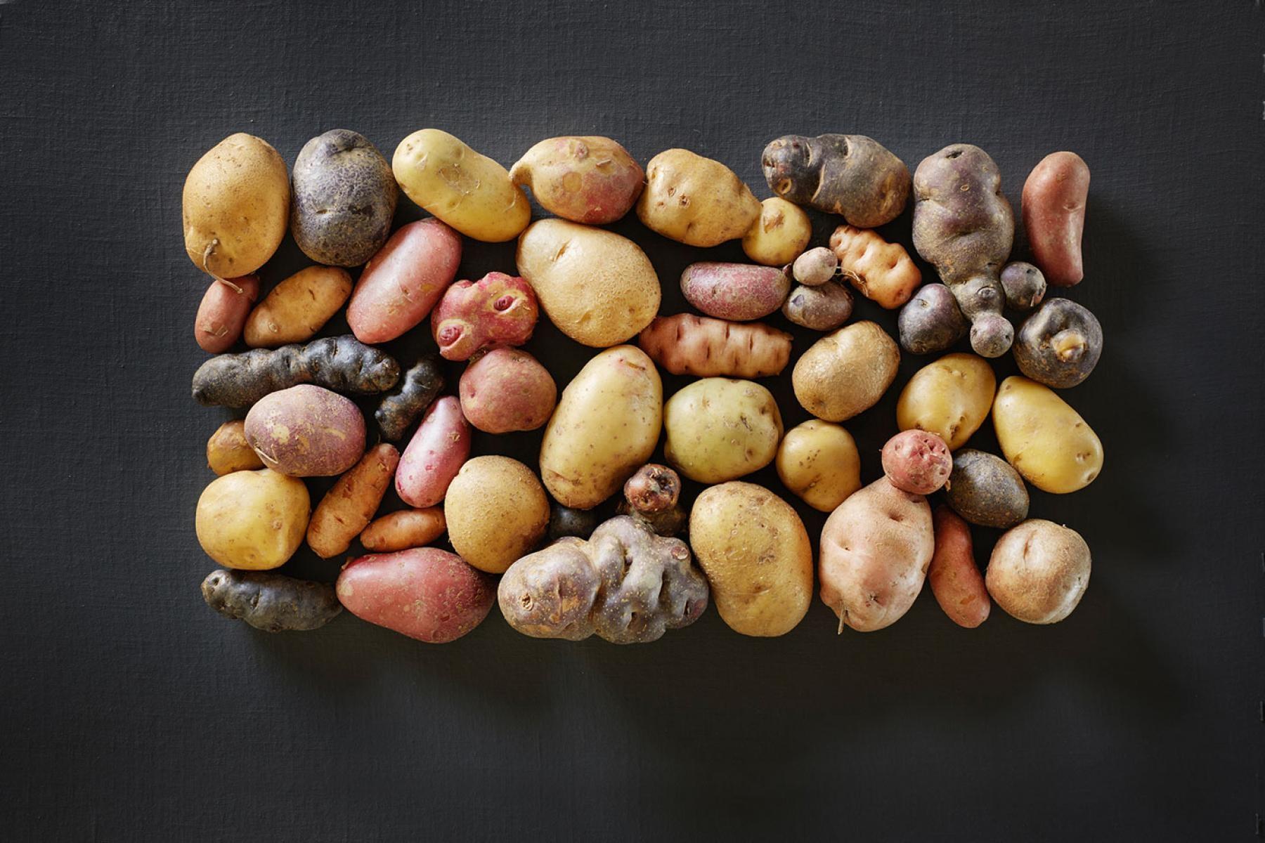 Bergkartoffeln