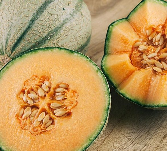 Melonen Festival